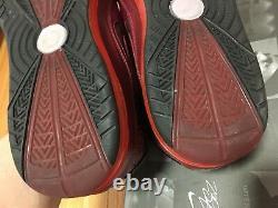Nike Lebron 7 VII Noël Taille De Noël 10.5 Porté 1x Excellent État Original